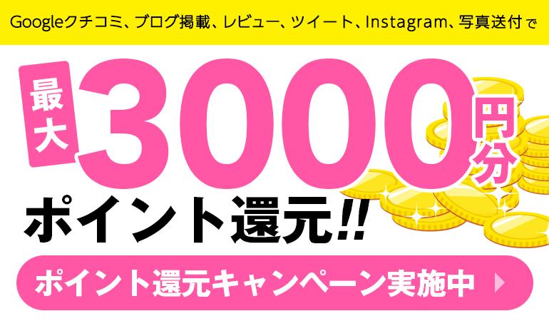 最大2000円ポイントキャンぺーン