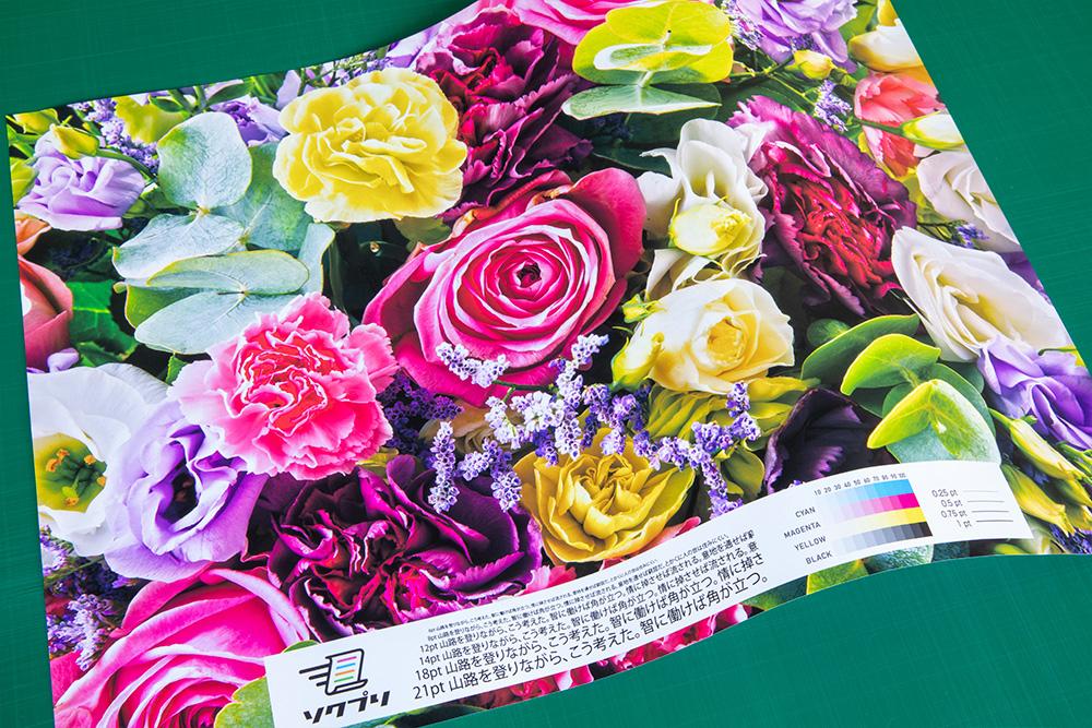 マット紙の商品写真